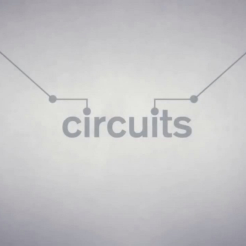 precio actual de Circuits en la eshop